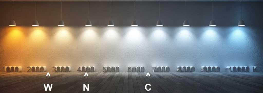 Infographic of light colour temperatures